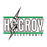 Logo of Hagroy Electronic
