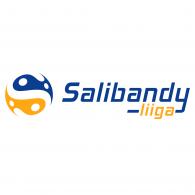 Logo of Salibandyliiga