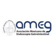 Logo of Ameg