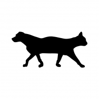 Logo of The Cat and The Dog