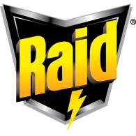 raid.png?itok=19e3QwaS