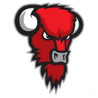 Logo of Bisons