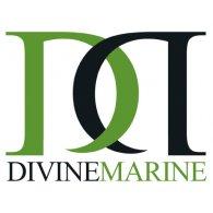 Logo of Divine Marine Fiberglass