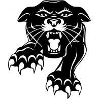 Logo of Panther