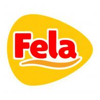 Logo of Fiambres Fela