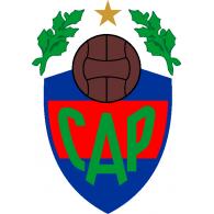 Logo of Pellegrini de Salta