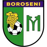 Logo of Moldova Boroseni