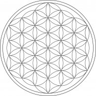 Logo of Flower of Life