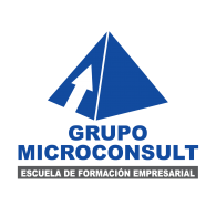Logo of Microconsult Peru