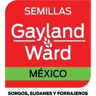 Logo of Gayland Ward Mexico