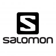 Image result for salomon logo