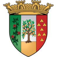 Logo of Ville De Blida