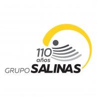 Logo of Grupo Salinas