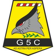 Logo of Grupo 5 de Caza