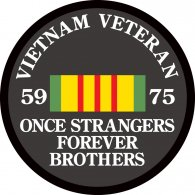 Logo of Vietnam Veteran