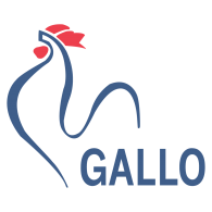 Logo of Gallo Papeleria