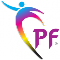Logo of Punjab Flex