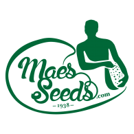 Logo of Maes Seeds