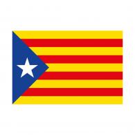 Logo of Cataluña Flag