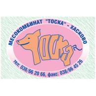 Logo of Toska