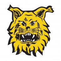 Image result for ILVES LOGO