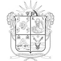 Logo of Irapuato Byn
