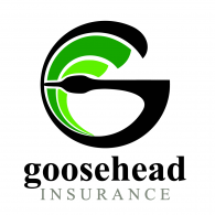 Logo of Goosehead Insurance