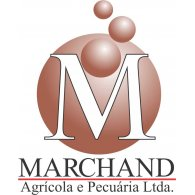 Logo of Marchand