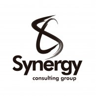 Logo of Synergy Consulting Group