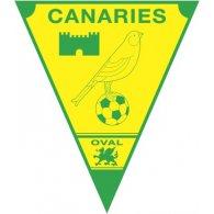 Logo of Caernarfon Town FC