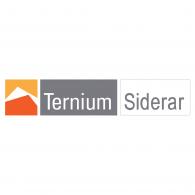 Logo of Ternium Siderar